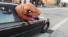 Dino: dinossauro assustando todo mundo!