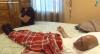 Espancamento de turista mexicano de 92 anos choca os Estados Unidos