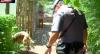 Cão farejador encontra drogas e traficante é pego após tentativa de fuga