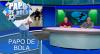 Papo de Bola (12/11/19) | Completo