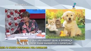 Cirurgia espiritual pode ser aplicada em animais de estima��o (5)