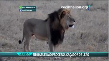 Zimb�bue desiste de processar dentista que matou o le�o Cecil