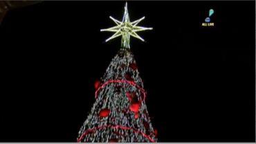 Fam�lias conferem a inaugura��o da �rvore de Natal do Ibirapuera