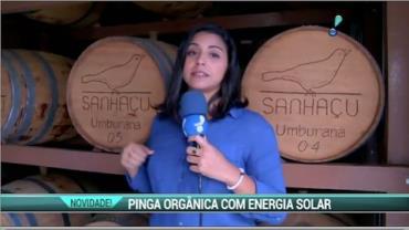 Cacha�a 100% org�nica � produzida em PE com energia solar