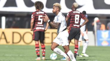 Santos carimba faixa do Flamengo com goleada e garante o vice