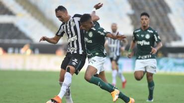 Palmeiras faz gol no final do jogo, vence Santos e é bicampeão da Libertadores