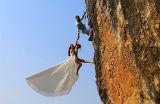 Gato de 10 quilos; noivos alpinistas...Veja as mais bizarras da semana