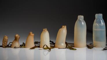 Designer cria garrafa de água feita de alga que é 100% biodegradável