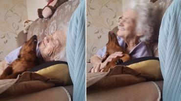 Cadelinha faz a alegria de avó com Alzheimer e emociona a web