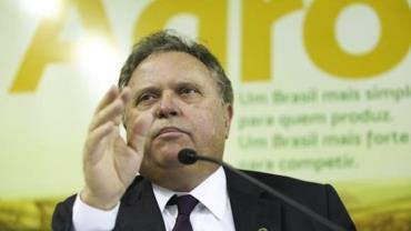"""Ministro diz que fiscalização agropecuária brasileira é """"forte, robusta e séria"""""""