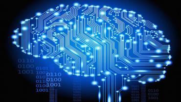 Vida eterna? Cientistas transferem cérebro de animal para computador