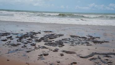 Salles: manchas de óleo em praias são caso de poluição sem precedente
