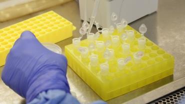 Coronavírus já provocou cinco mortes na Itália