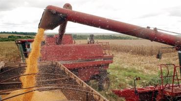 Em meio à alta do arroz, Brasil tem safra recorde de grãos, diz Conab
