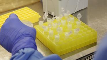 Biontech e Pfizer pedem registro de vacina anti-Covid na UE