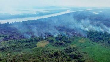 Mato Grosso do Sul decreta Estado de Emergência Ambiental