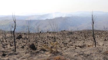 Guarda chora ao relatar dificuldades no combate ao incêndio no Parque Juquery