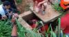 Criança é resgatada do bueiro após ser levada pela enxurrada em SP
