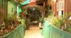 Presépio em casa de Itabirito, em Minas Gerais, reúne 10 mil peças