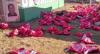 MG: Vândalo destrói homenagem às vítimas de Brumadinho