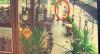 Câmeras gravam assassinato em restaurante de São Paulo