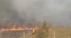 MG: agricultor morre preso em incêndio na mata