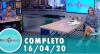 Tricotando (16/04/2020)   Completo