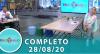 Tricotando (28/08/2020)   Completo