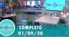 Tricotando (01/09/2020)   Completo