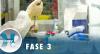 Testes com vacina de Oxford recomeçam no Brasil