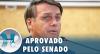 Bolsonaro sancionará lei que aumenta pena para maus-tratos a cães e gatos