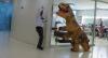 Dino: Assustando os funcionários da RedeTV!