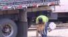 Caminhoneiro é preso por atirar em uma cachorra em São Paulo
