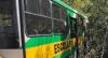 Acidente entre ônibus escolar e caminhão deixa mortos em Itapeva (SP)