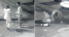 Câmera flagra personal trainer espancando mulher em Goiânia