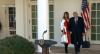 Julgamento de impeachment de Trump vai ao Senado nesta semana