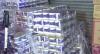 Coronavírus: grupo armado rouba papel higiênico na China