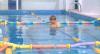 Covid-19 : Risco de contaminação na piscina e no mar é baixo