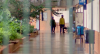 Universidades sentem aumento da inadimplência com a pandemia