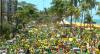 Recife: Manifestação em apoio ao presidente