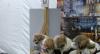 Virada Pet: evento promove adoção e atividades gratuitas