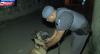 Cães farejadores atuam em ocorrência de combate ao tráfico de drogas