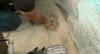 Homem é preso após polícia encontrar drogas enterradas em casa