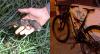 Jovem armado tenta roubar ciclista e entrega parceiro