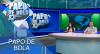 Papo de Bola (14/11/19) | Completo