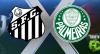 Santos 1x1 Palmeiras - 19/07/2018 - Campeonato Brasileiro