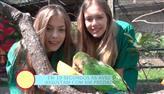 Modelos alimentam aves no Zoológico Municipal de São Bernardo do Campo