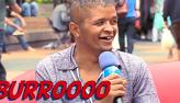 Sofá: Os melhores vídeos da semana do zap zap