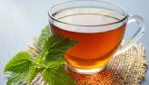 Ervas medicinais: aprenda mistura para perder peso e desintoxicar