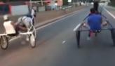 Donos de cavalos usados em racha em rodovia são multados em R$ 3 mil